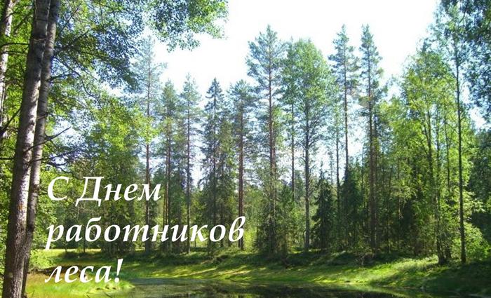 Управляющий  Марий ЭлАлександр Евстифеев поздравил работников леса иветеранов лесной службы